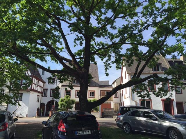 Die Quelle - Bernkastel-Kues - Oda + Kahvaltı