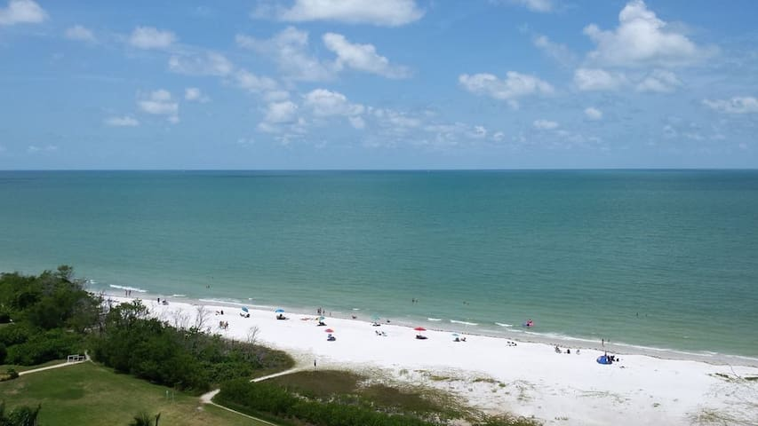 Magnificent Gulf Views, 11th Floor Tropical Style!