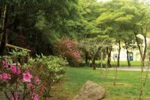 Exterior- jardim