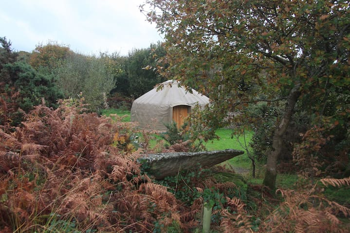 Oakwood Yurt, Bodmin Moor