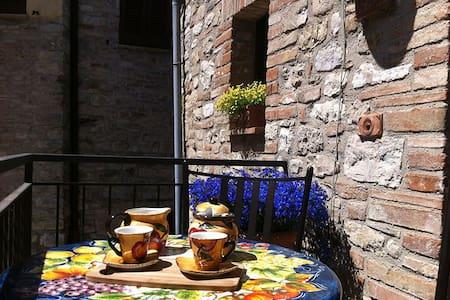 La Piazzetta del Borgo - I Girasoli - Todi