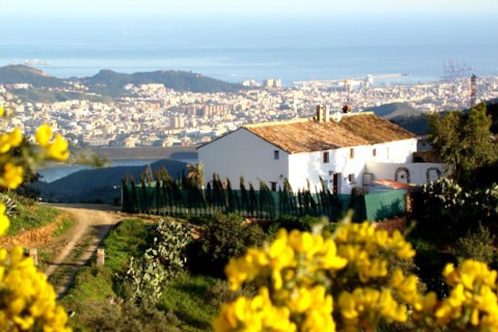 The house views, mountains, Malaga city and the Mediterranean sea