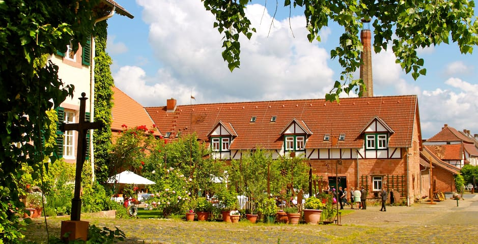 Organic farm near Frankfurt 3 - Otzberg - Appartement