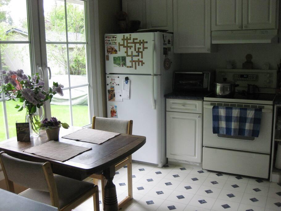 Kitchen overlooking the big backyard.
