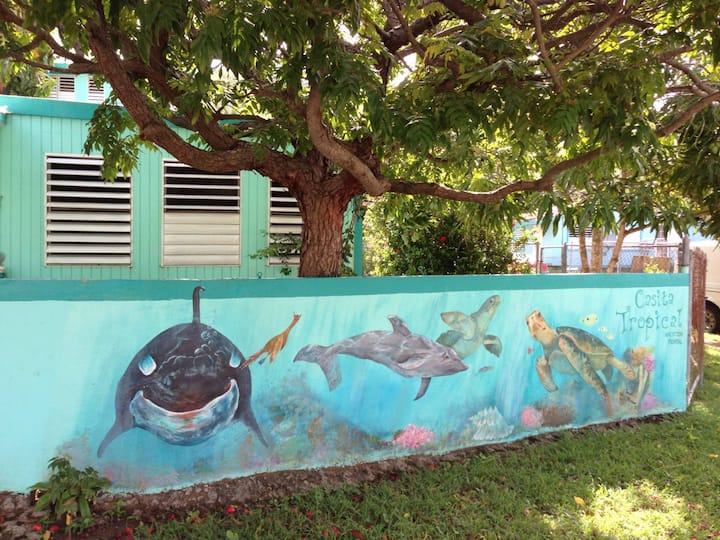 Queen Efficiency Apartment at Casita Tropical