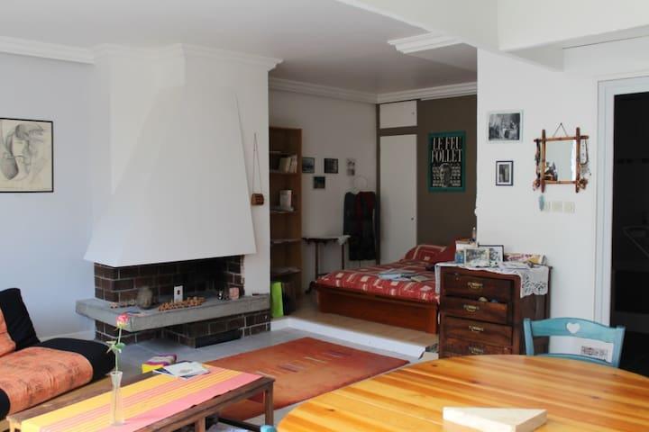 centre ville grand studio de 43 M² - Grenoble - Apartamento