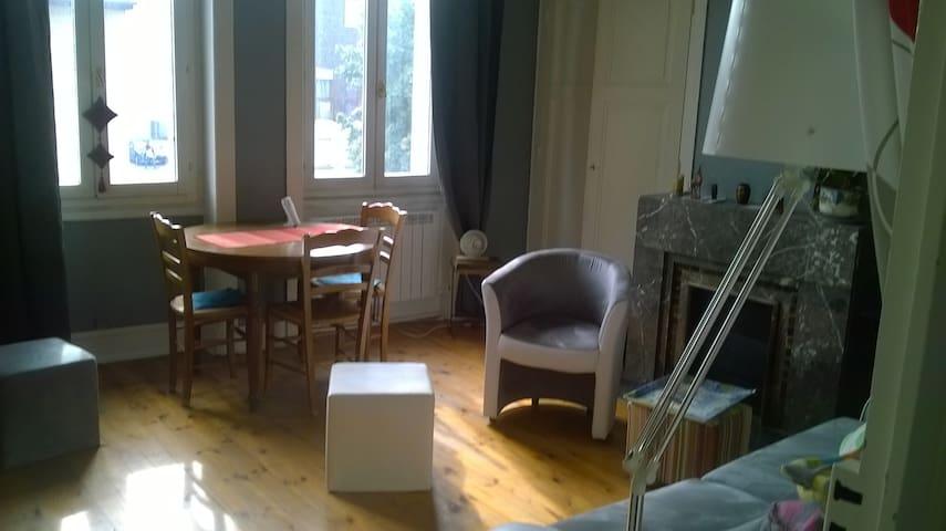 F1 lumineux et chaleureux - Saint-Étienne - Apartamento