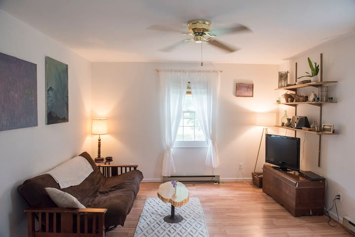 Cozy, Sunny 1 Bdrm  In-Law Suite