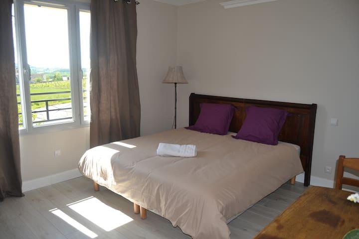 Studio Ageliki 3 - flaugeac - Apartemen