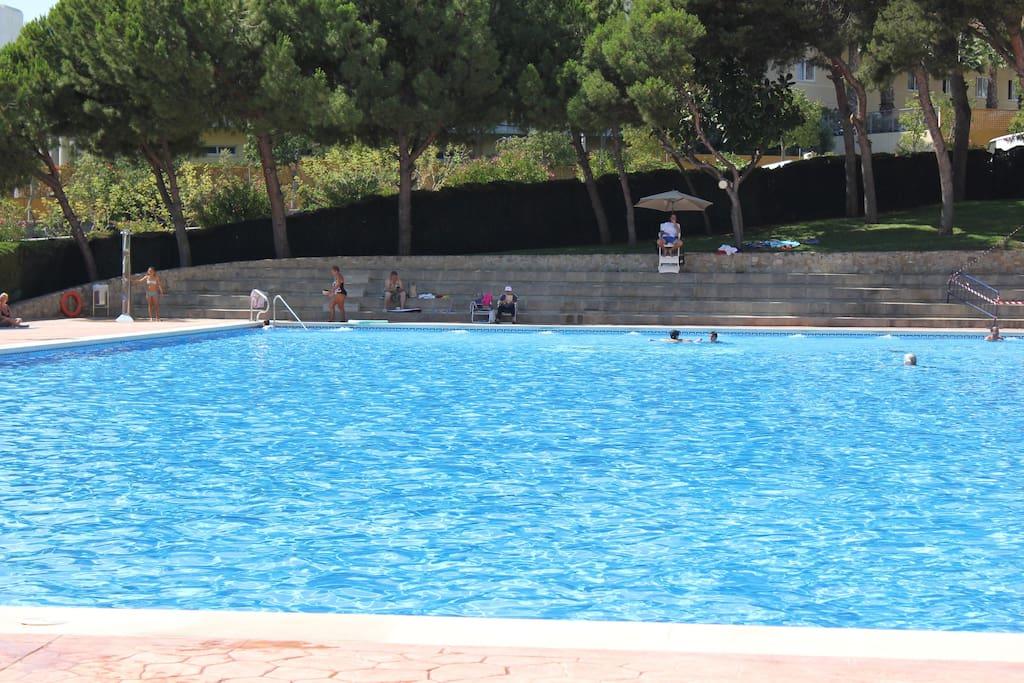 vista de la piscina desde dentro