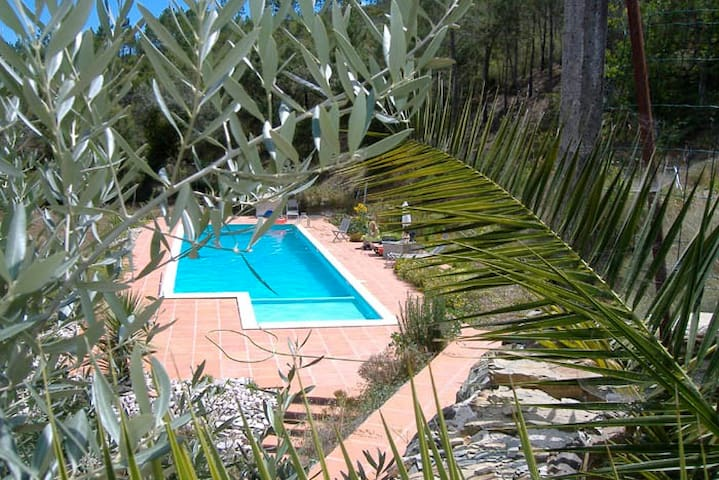 B&B in the hart of Portugal - K1 - Vila de Rei Municipality - Bed & Breakfast