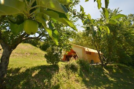 Safari Tent - Gaillac-Toulza - Teltta