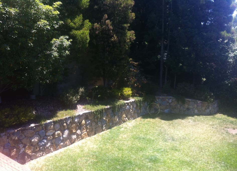 Partial view of back yard from deck