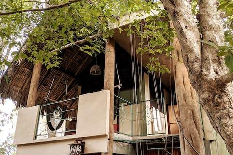 BIRDHOUSE - Treetop Inspiration in a Maya Oasis