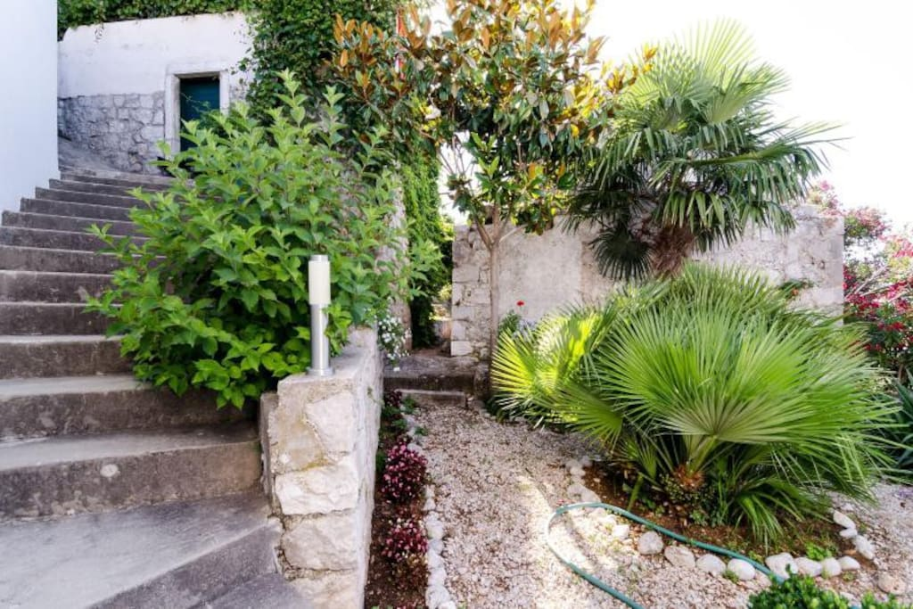 The typical Mediterranean vegetation make the entry staircase look nice and inviting.