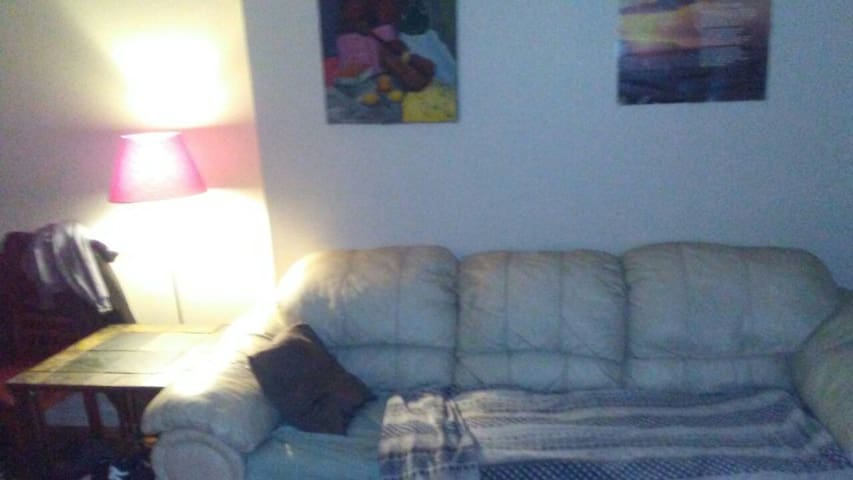 Bronx apartment; living room couch