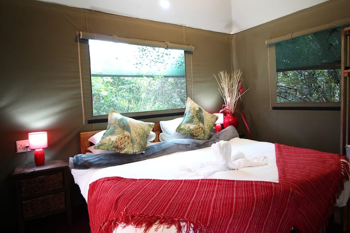 Vlier Indigenous Tented Room