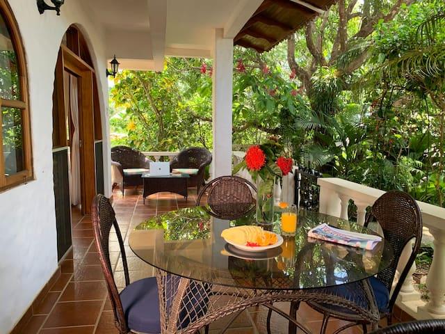 Apartments in Playa Tamarindo, Ocean views #39