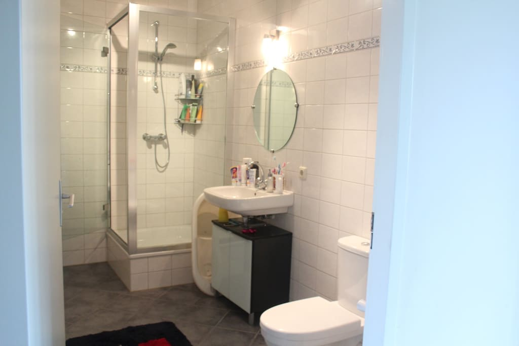 Bathroom with Shower, WC and Washbasin