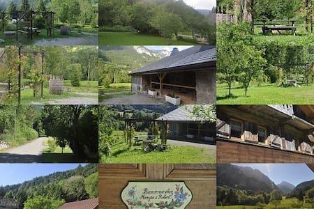 45 m² dans  ferme du XVIII ème ,champs et forêt - Abondance - Apartemen
