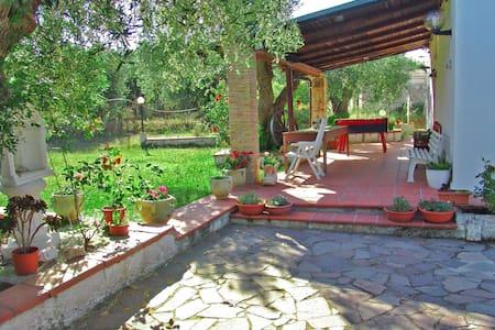 """Casa vacanze """"Villa delle rose""""  - Pisticci"""