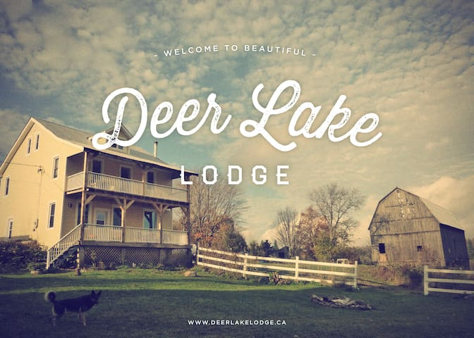 Deer Lake Lodge - Commanda - Bed & Breakfast