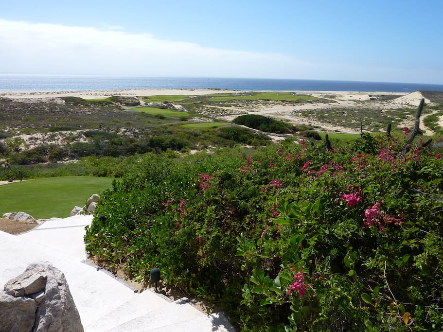 Diamante Dunes  Golf Resort