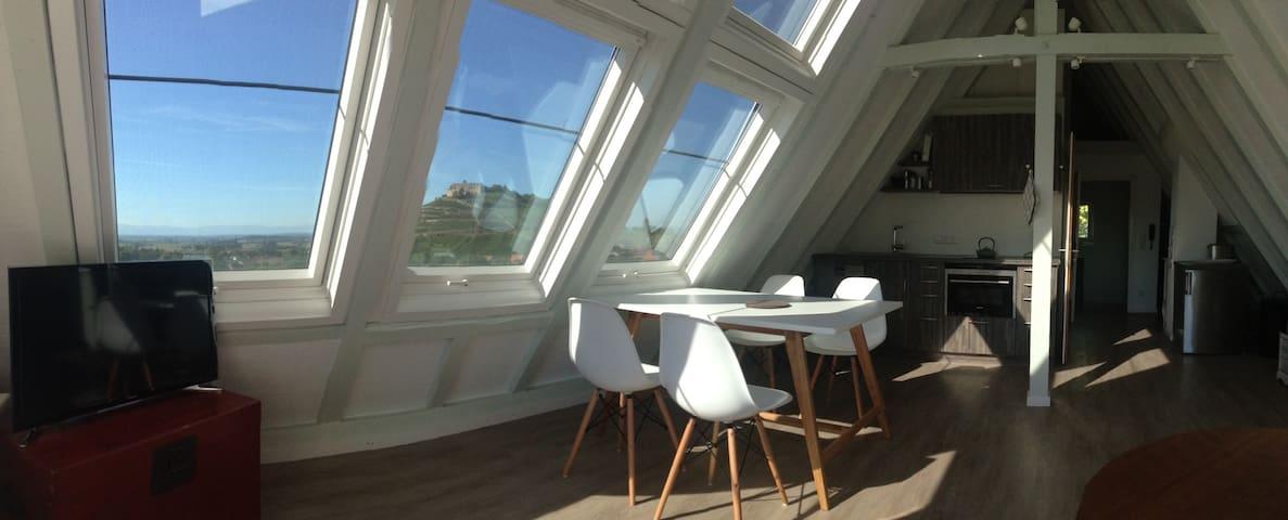 Studio mit atemberaubender Aussicht - Staufen im Breisgau - House