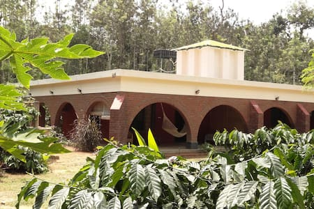 D&D Coffee Orchards, Nangala, Coorg - Bed & Breakfast