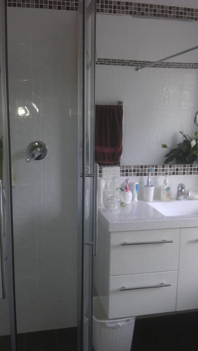 Shower recess and Vanity