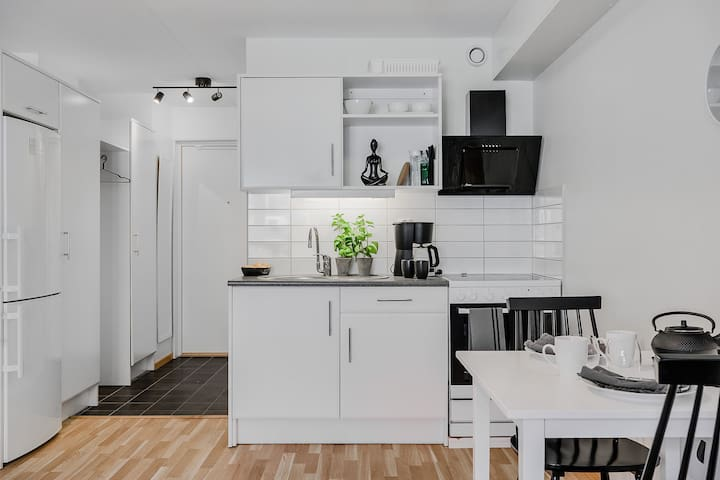 RENOVATED APARTMENT IN CENTRAL HELSINGBORG