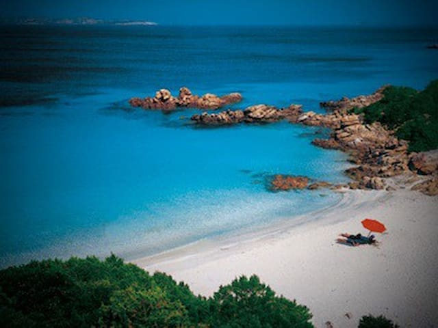 Sea view location in Porto Rotondo - Porto Rotondo - Hus