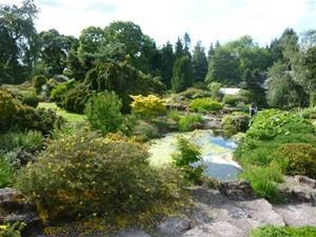 Royal Botanic Gardens (10 minutes on bus)