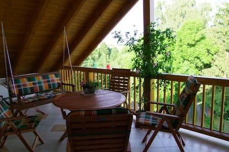 Ferienwohnung mit Ausblick - Waldenburg - Pis
