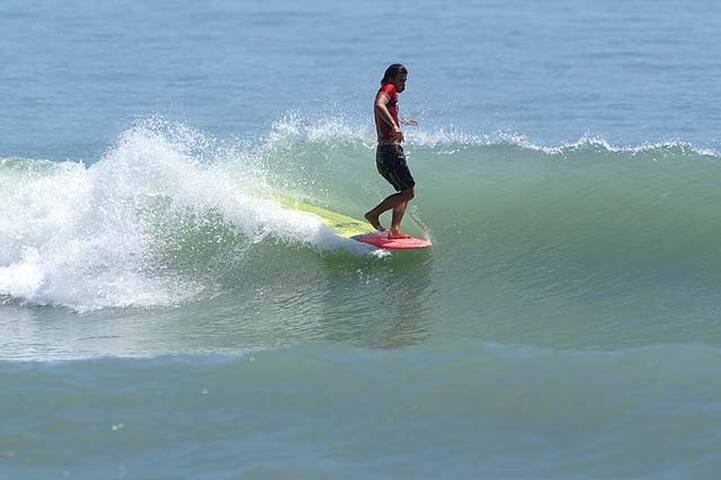 nombreuses écoles de surf pour tout age et tout niveaux
