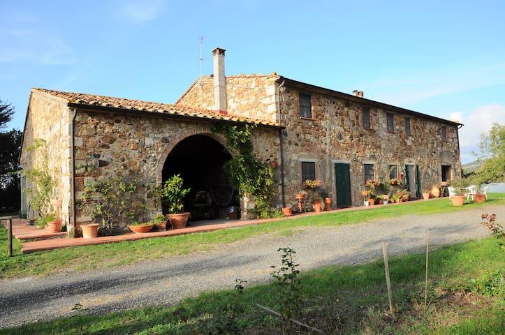 Aia delle Cipolle - Castellina Marittima - Lägenhet