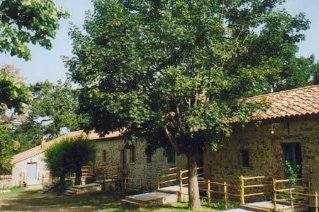 Torre Camigliati, Parco OldCalabria - Camigliatello Silano