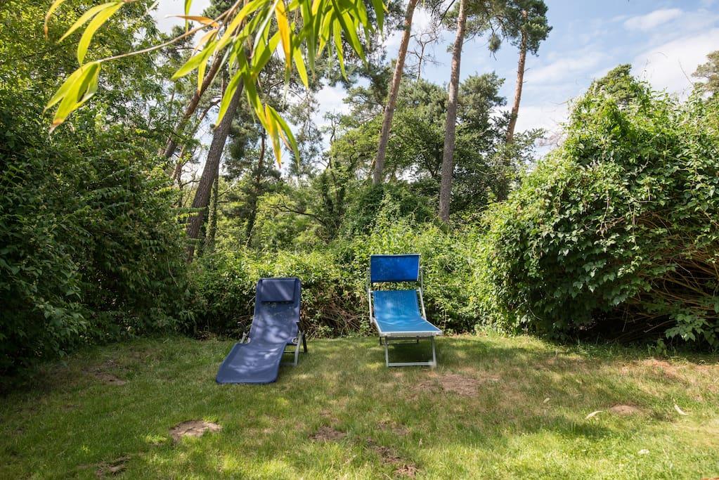 Unser Garten bietet auch lauschige Schattenplätze