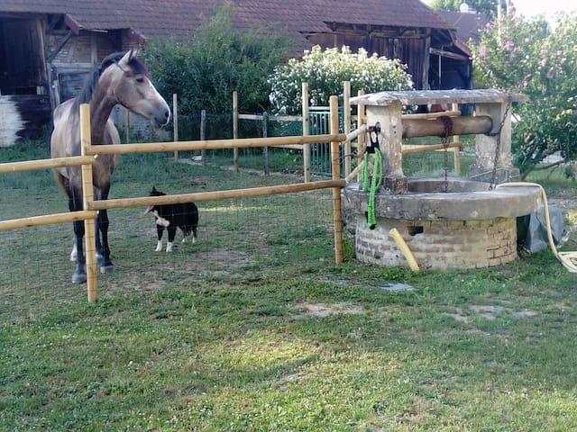 La ferme de la chassagne 1