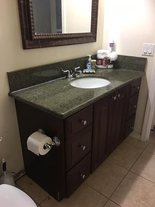 vanity with hair dryer,  feminine products, q- tips, hand soap and more