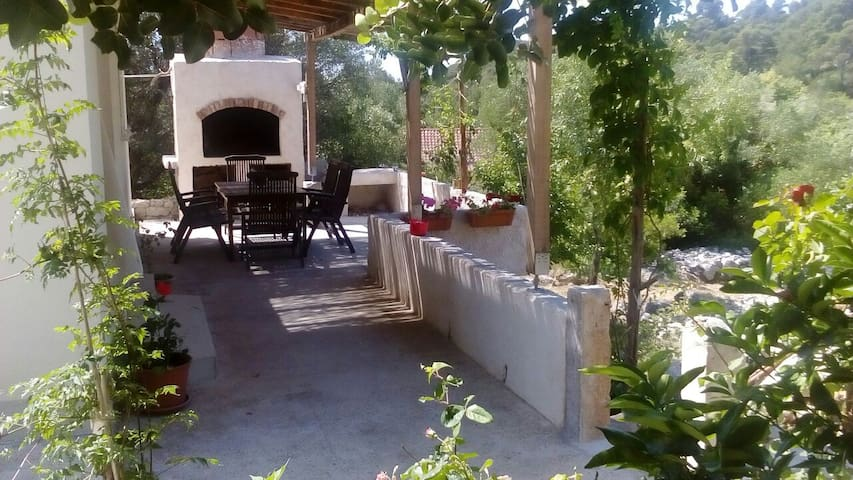 Holiday house 50% June discount