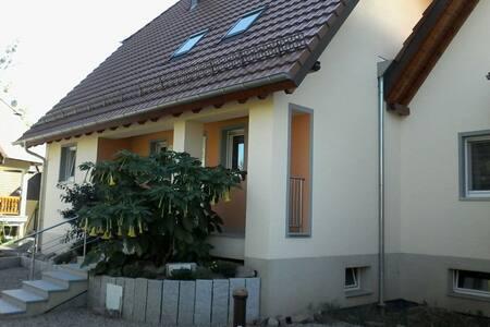 Appartement proche de Strasbourg - La Wantzenau - Huis