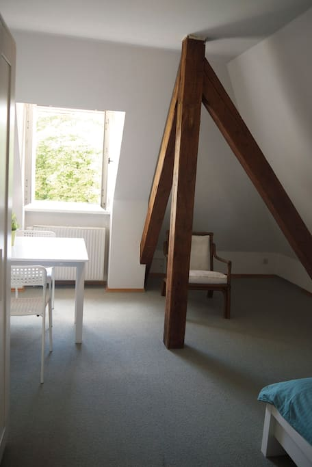207 - Double bed, one single bed and optional a couch bed for 2 kids, south view