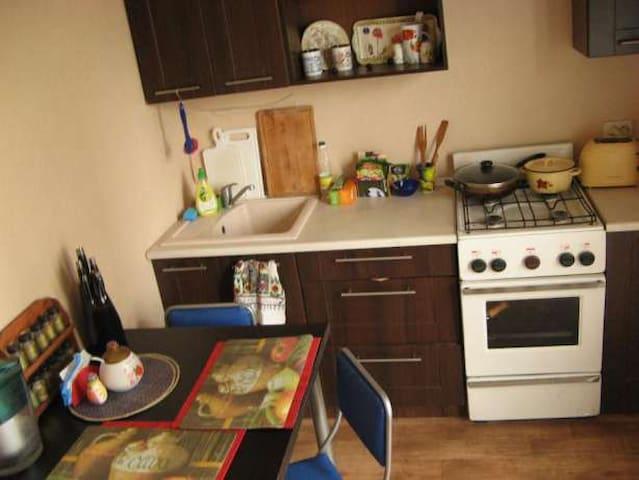 Удобная хорошая недорогая квартира - Odesa - Flat