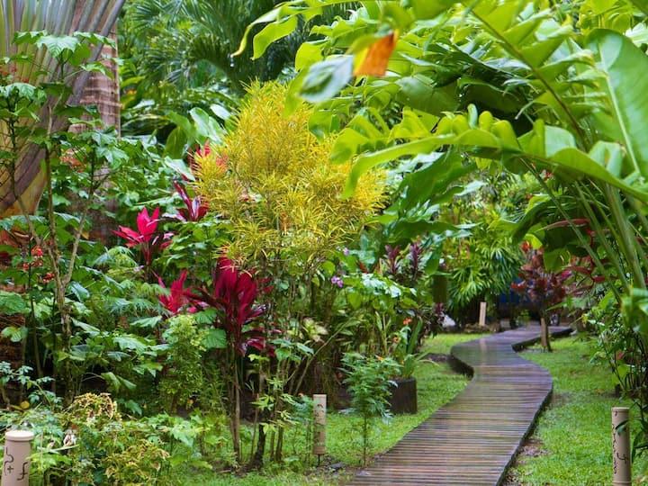 Oasis del Caribe, priv  Pool, A/C, fast Internet