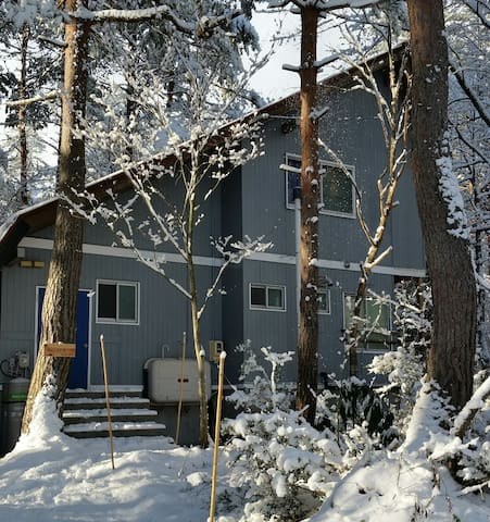 Your Winter wonderland holiday cottage! - Hakuba - House