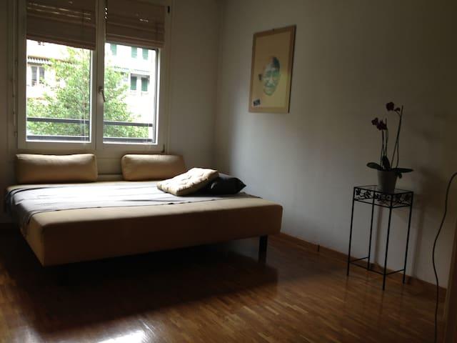 Jolie chambre/salle de bain/cuisine - Carouge - Apartment