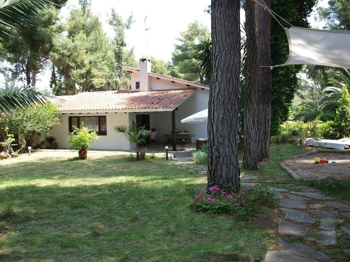 Luxury detached house - 1sq. yard  (ΑΜ00000574519)