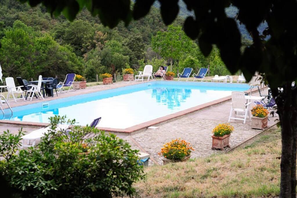 L'appartamento si affaccia sulla piscina del casale Spizzicacacio