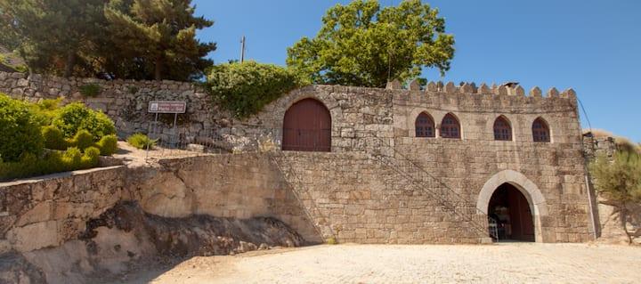 Castle apartement:historic center-D.Inês de Castro